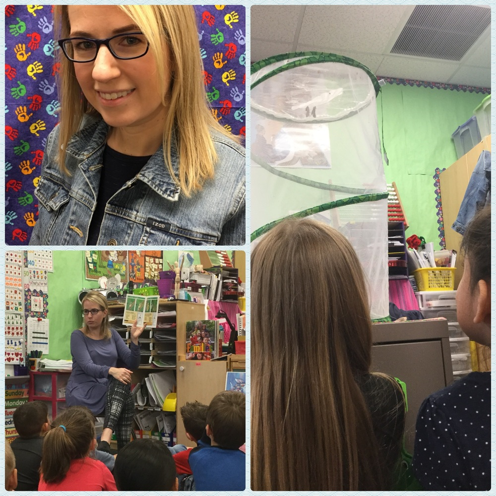 Kinder Profiles: Mrs. Hansen