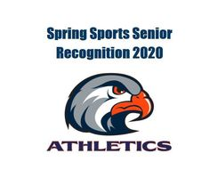 Hawks Spring Sports Recognition 2020