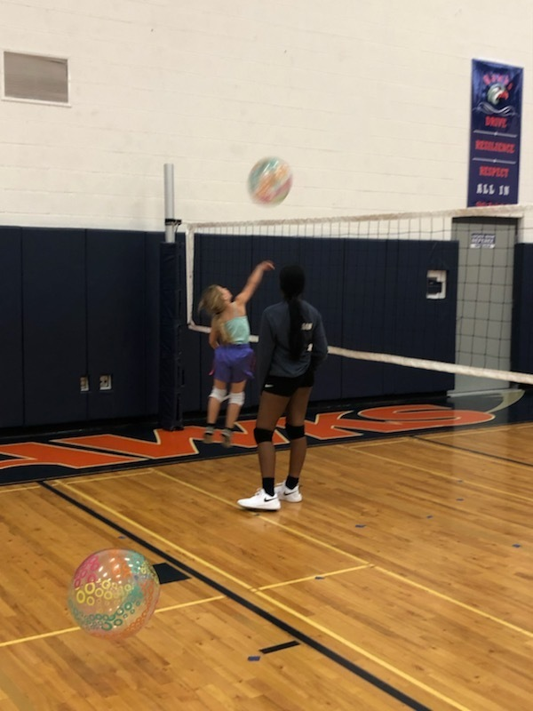 Hawks Volleyball Camp